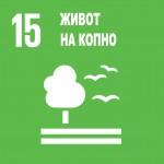 UN-Booklet Global Goals MK-page-034